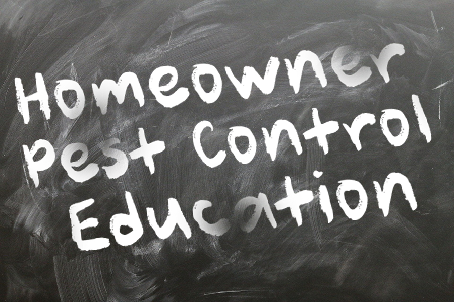 Homeowner Pest Control Education