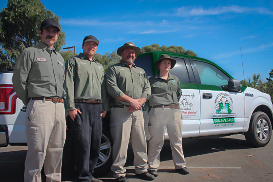 Know What All Your Pest Control Options Are