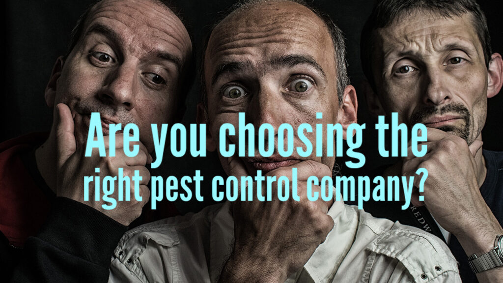 Are you choosing the right pest control company